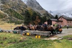 Val-Roseg-8-2019